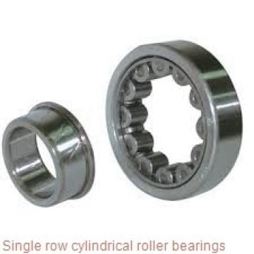 N2344EM Single row cylindrical roller bearings